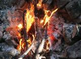 Can you find dry firemaking materials during inclimate weather?